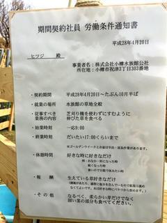 おたる水族館2.jpg