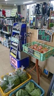 ゴルフ用品と野菜.JPG